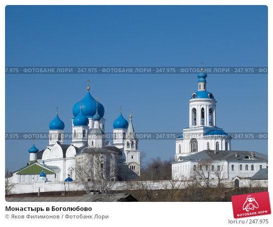 Монастырь в Боголюбово, фото № 247975, снято 29 марта 2008 г. (c) Яков Филимонов / Фотобанк Лори