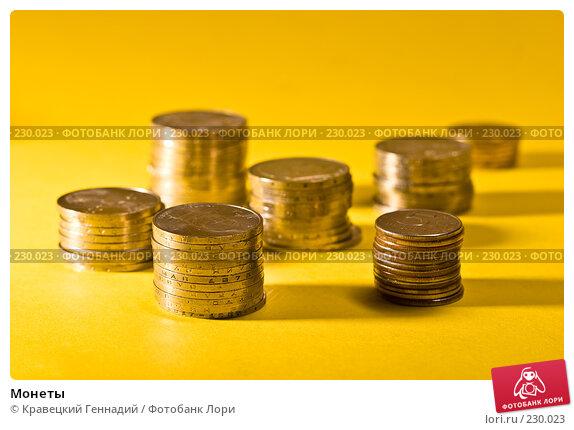 Купить «Монеты», фото № 230023, снято 14 января 2005 г. (c) Кравецкий Геннадий / Фотобанк Лори