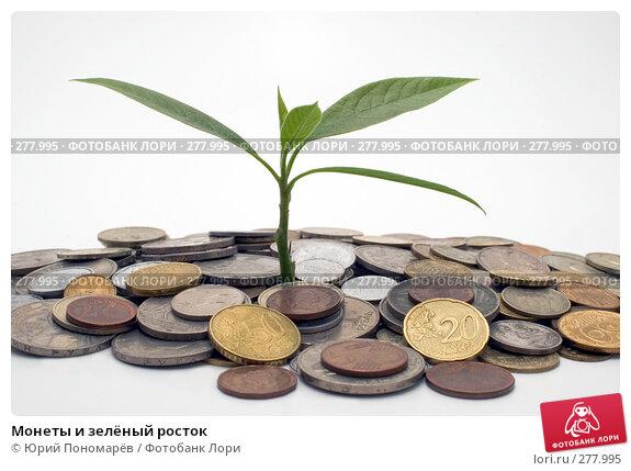 Монеты и зелёный росток, фото № 277995, снято 21 апреля 2008 г. (c) Юрий Пономарёв / Фотобанк Лори