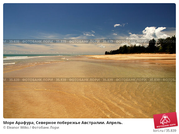 Море Арафура, Северное побережье Австралии. Апрель., фото № 35839, снято 13 мая 2007 г. (c) Eleanor Wilks / Фотобанк Лори