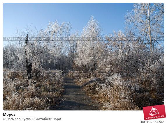 Мороз, фото № 157563, снято 2 ноября 2007 г. (c) Насыров Руслан / Фотобанк Лори