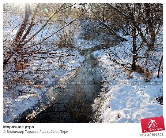 Морозное утро, фото № 194323, снято 4 января 2008 г. (c) Владимир Тарасов / Фотобанк Лори