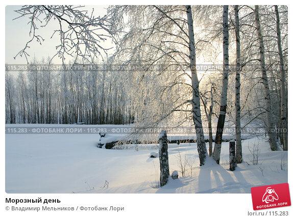 Купить «Морозный день», фото № 115283, снято 1 декабря 2004 г. (c) Владимир Мельников / Фотобанк Лори