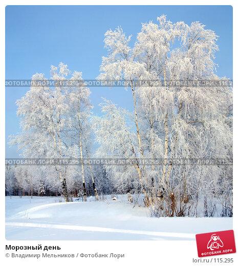 Морозный день, фото № 115295, снято 29 июля 2017 г. (c) Владимир Мельников / Фотобанк Лори