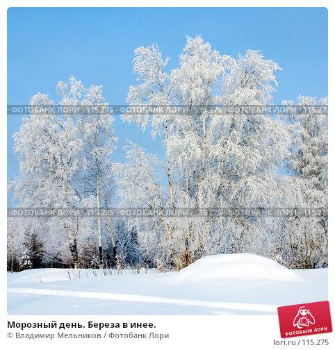 Морозный день. Береза в инее., фото № 115275, снято 1 декабря 2004 г. (c) Владимир Мельников / Фотобанк Лори