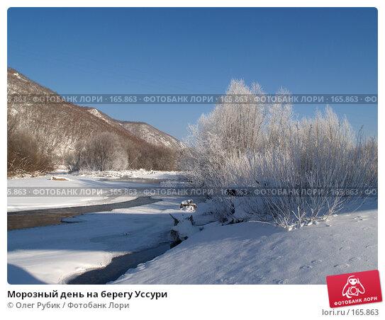 Морозный день на берегу Уссури, фото № 165863, снято 4 января 2008 г. (c) Олег Рубик / Фотобанк Лори