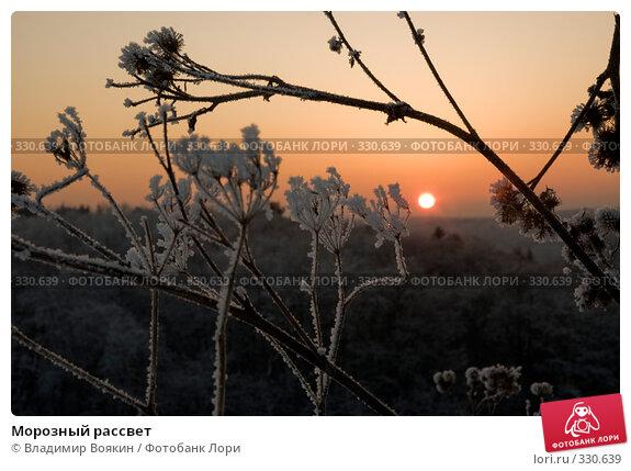Морозный рассвет, фото № 330639, снято 6 января 2008 г. (c) Владимир Воякин / Фотобанк Лори
