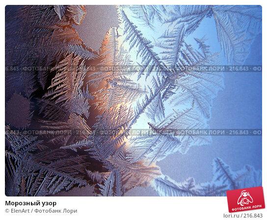 Морозный узор, фото № 216843, снято 21 января 2017 г. (c) ElenArt / Фотобанк Лори