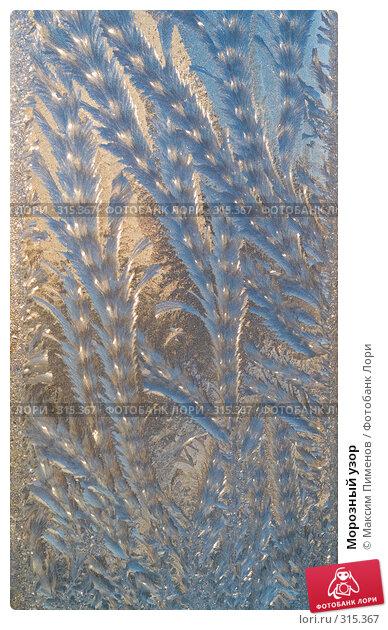 Купить «Морозный узор», фото № 315367, снято 23 ноября 2007 г. (c) Максим Пименов / Фотобанк Лори