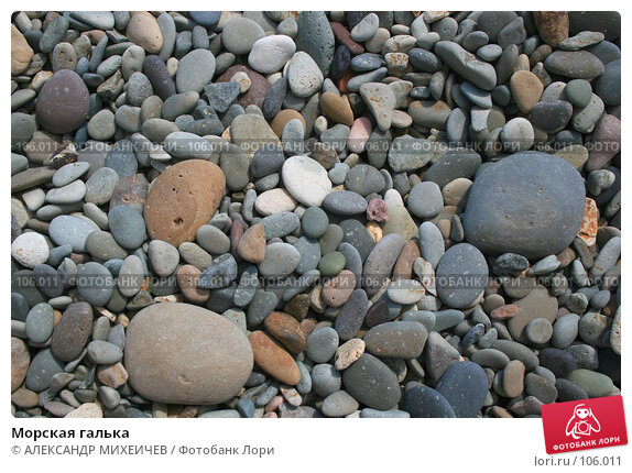 Морская галька, фото № 106011, снято 17 августа 2007 г. (c) АЛЕКСАНДР МИХЕИЧЕВ / Фотобанк Лори