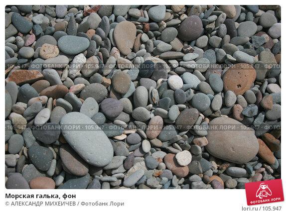 Морская галька, фон, фото № 105947, снято 17 августа 2007 г. (c) АЛЕКСАНДР МИХЕИЧЕВ / Фотобанк Лори