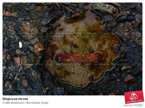 Морская петля, фото № 73067, снято 2 ноября 2006 г. (c) Alla Andersen / Фотобанк Лори
