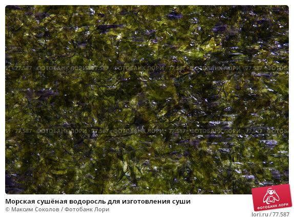 Купить «Морская сушёная водоросль для изготовления суши», фото № 77587, снято 24 июля 2007 г. (c) Максим Соколов / Фотобанк Лори