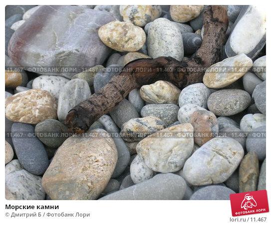 Морские камни, фото № 11467, снято 22 июля 2006 г. (c) Дмитрий Б / Фотобанк Лори