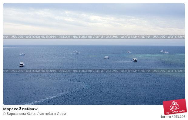 Купить «Морской пейзаж», фото № 253295, снято 2 января 2008 г. (c) Биржанова Юлия / Фотобанк Лори