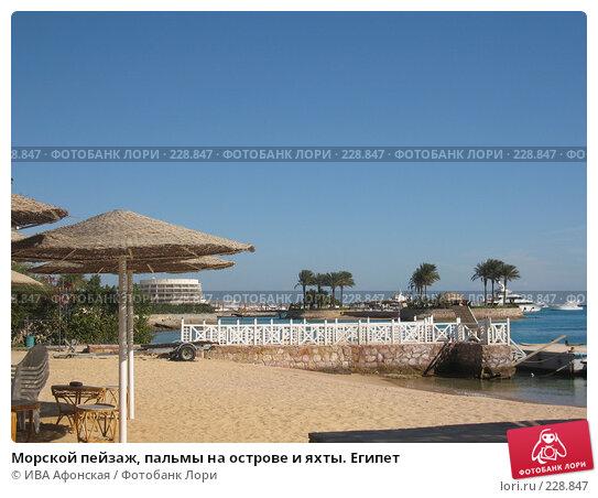 Морской пейзаж, пальмы на острове и яхты. Египет, фото № 228847, снято 8 января 2008 г. (c) ИВА Афонская / Фотобанк Лори