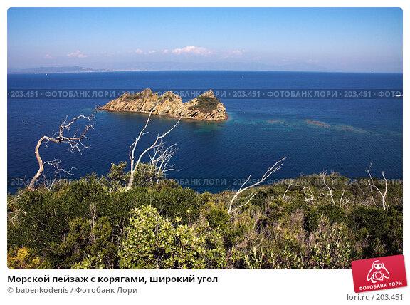 Морской пейзаж с корягами, широкий угол, фото № 203451, снято 15 сентября 2005 г. (c) Бабенко Денис Юрьевич / Фотобанк Лори
