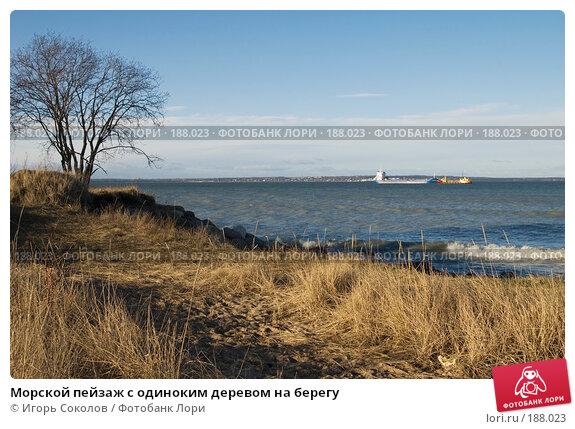 Морской пейзаж с одиноким деревом на берегу, фото № 188023, снято 26 января 2008 г. (c) Игорь Соколов / Фотобанк Лори