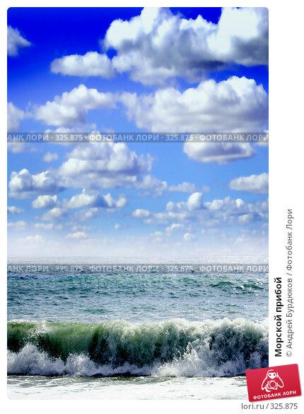Морской прибой, фото № 325875, снято 8 августа 2007 г. (c) Андрей Бурдюков / Фотобанк Лори
