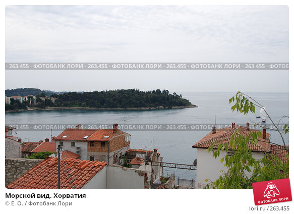 Морской вид. Хорватия, фото № 263455, снято 25 апреля 2008 г. (c) Екатерина Овсянникова / Фотобанк Лори