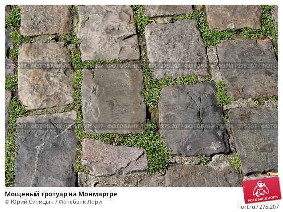 Купить «Мощеный тротуар на Монмартре», фото № 275207, снято 20 июня 2007 г. (c) Юрий Синицын / Фотобанк Лори