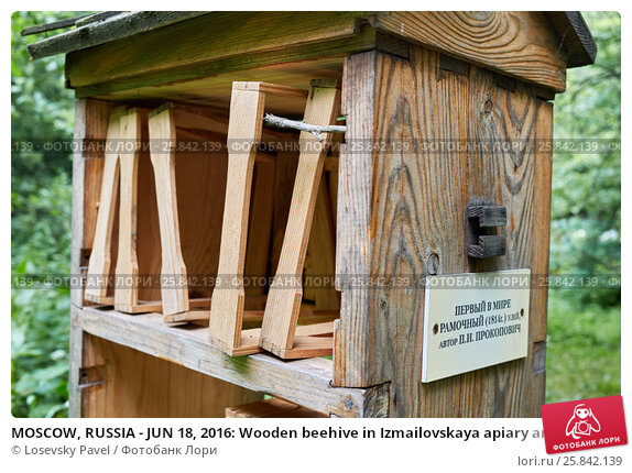 Купить «MOSCOW, RUSSIA - JUN 18, 2016: Wooden beehive in Izmailovskaya apiary among plants on summer day. This is a firsrt movable-frame hive in the world by P.I.Prokopovich (inscription on plate).», фото № 25842139, снято 18 июня 2016 г. (c) Losevsky Pavel / Фотобанк Лори