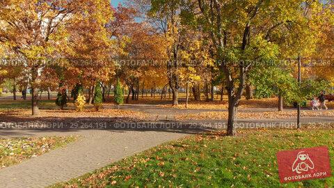 Купить «Moscow, Russia - October 17. 2018. Autumn park on clear day in Zelenograd», видеоролик № 29264191, снято 21 июля 2019 г. (c) Володина Ольга / Фотобанк Лори