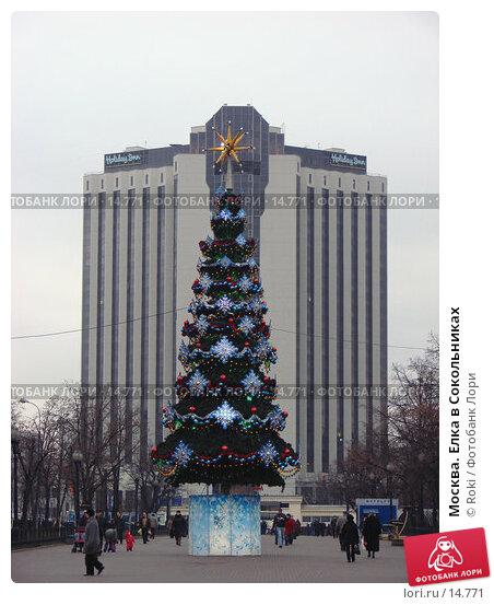 Москва. Елка в Сокольниках, фото № 14771, снято 13 декабря 2006 г. (c) Roki / Фотобанк Лори