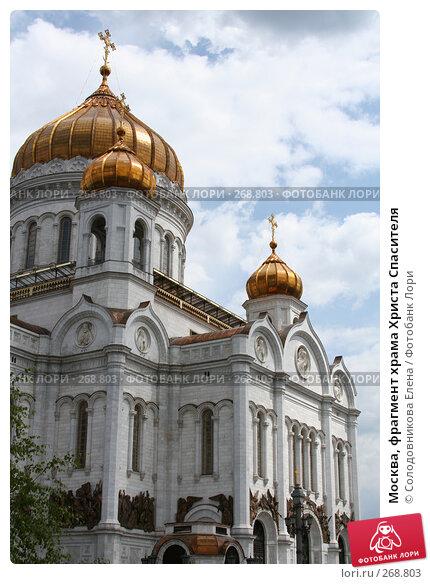 Купить «Москва, фрагмент храма Христа Спасителя», фото № 268803, снято 24 июня 2007 г. (c) Солодовникова Елена / Фотобанк Лори