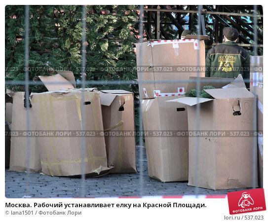 Купить «Москва. Рабочий устанавливает елку на Красной Площади.», эксклюзивное фото № 537023, снято 22 ноября 2007 г. (c) lana1501 / Фотобанк Лори