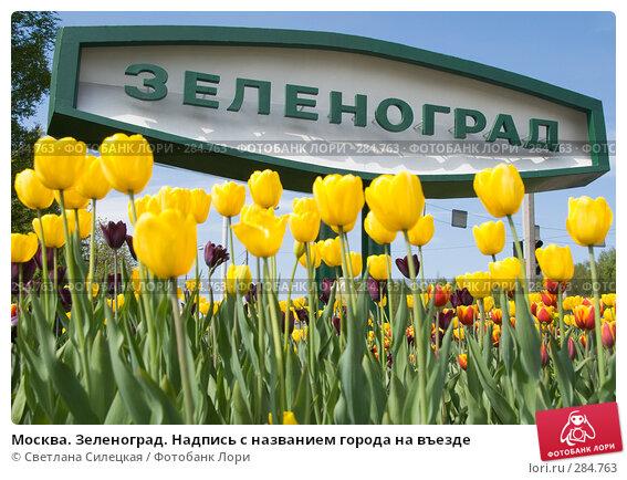 Купить «Москва. Зеленоград. Надпись с названием города на въезде», фото № 284763, снято 10 мая 2008 г. (c) Светлана Силецкая / Фотобанк Лори