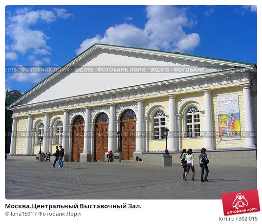 Купить «Москва.Центральный Выставочный Зал.», эксклюзивное фото № 302015, снято 27 апреля 2008 г. (c) lana1501 / Фотобанк Лори