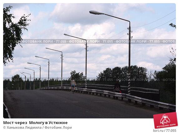 Мост через  Мологу в Устюжне, фото № 77055, снято 19 августа 2007 г. (c) Ханыкова Людмила / Фотобанк Лори