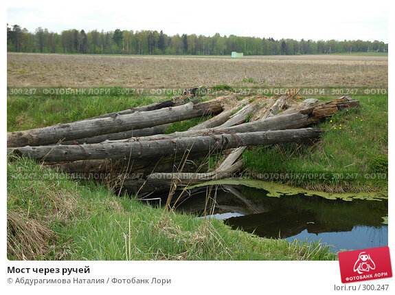 Мост через ручей, фото № 300247, снято 11 мая 2008 г. (c) Абдурагимова Наталия / Фотобанк Лори