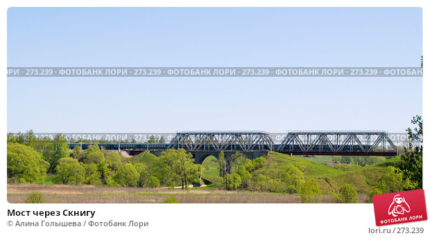 Мост через Скнигу, эксклюзивное фото № 273239, снято 3 мая 2008 г. (c) Алина Голышева / Фотобанк Лори