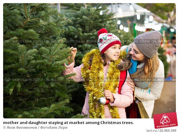 Купить «mother and daughter staying at market among Christmas trees.», фото № 26969399, снято 13 декабря 2017 г. (c) Яков Филимонов / Фотобанк Лори