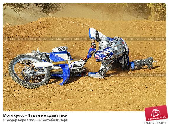Мотокросс - Падая не сдаваться, фото № 175647, снято 7 октября 2006 г. (c) Федор Королевский / Фотобанк Лори