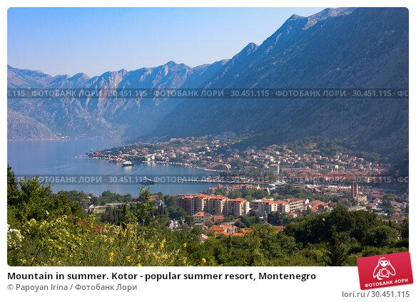 Mountain in summer. Kotor - popular summer resort, Montenegro (2015 год). Стоковое фото, фотограф Papoyan Irina / Фотобанк Лори
