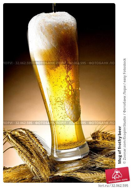 Mug of frothy beer. Стоковое фото, фотограф Zoonar.com/EcopimStudio / easy Fotostock / Фотобанк Лори