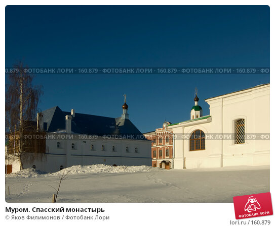 Муром. Спасский монастырь, фото № 160879, снято 23 декабря 2007 г. (c) Яков Филимонов / Фотобанк Лори