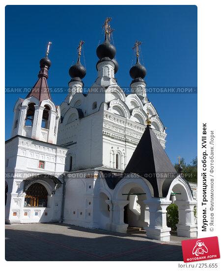 Муром. Троицкий собор. XVII век, фото № 275655, снято 2 мая 2008 г. (c) Яков Филимонов / Фотобанк Лори