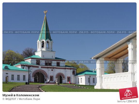 Музей в Коломенском, фото № 258915, снято 22 апреля 2008 г. (c) ФЕДЛОГ.РФ / Фотобанк Лори