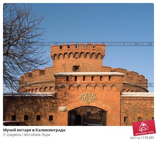 Музей янтаря в Калининграде, фото № 179091, снято 2 января 2008 г. (c) Liseykina / Фотобанк Лори