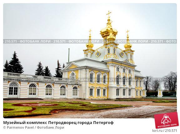 Музейный комплекс Петродворец города Петергоф, фото № 210571, снято 13 февраля 2008 г. (c) Parmenov Pavel / Фотобанк Лори