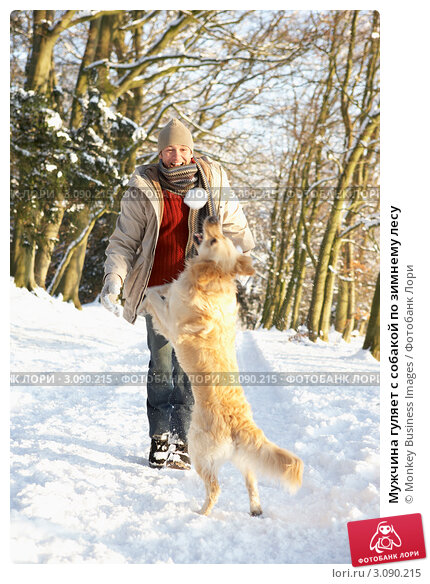 Мужчина гуляет с собакой по зимнему лесу, фото № 3090215, снято 8 января 2010 г. (c) Monkey Business Images / Фотобанк Лори