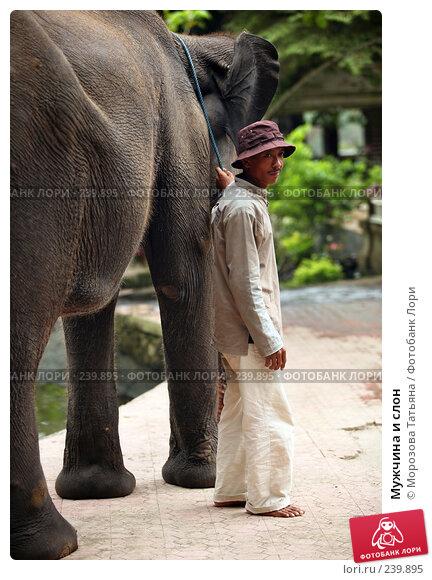 Мужчина и слон, фото № 239895, снято 30 октября 2007 г. (c) Морозова Татьяна / Фотобанк Лори