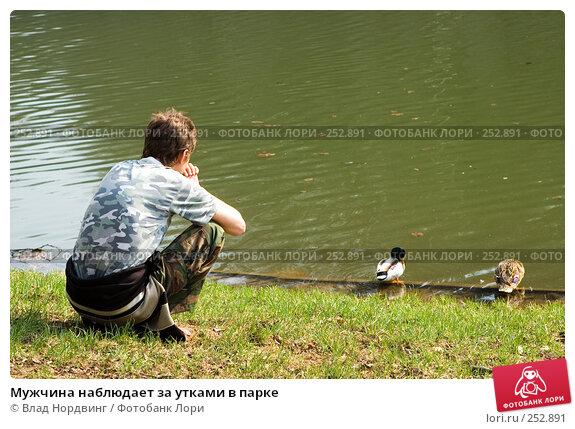 Мужчина наблюдает за утками в парке, фото № 252891, снято 12 апреля 2008 г. (c) Влад Нордвинг / Фотобанк Лори