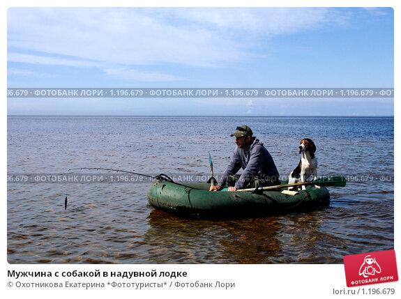 с собакой в лодке фото