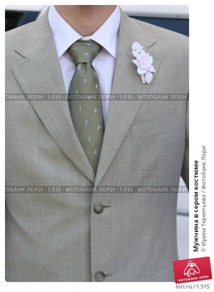 Мужчина в сером костюме, эксклюзивное фото № 1515, снято 29 июля 2005 г. (c) Ирина Терентьева / Фотобанк Лори