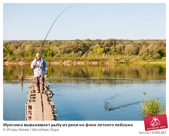 Купить «Мужчина вываживает рыбу из реки на фоне летнего пейзажа», эксклюзивное фото № 4099667, снято 12 сентября 2012 г. (c) Игорь Низов / Фотобанк Лори